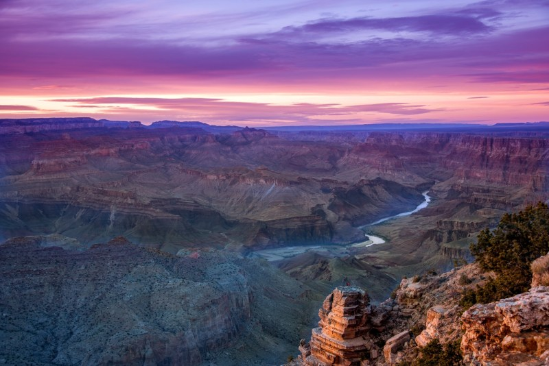 The Grand Canyon Railway is an excellent option for your next adventure!