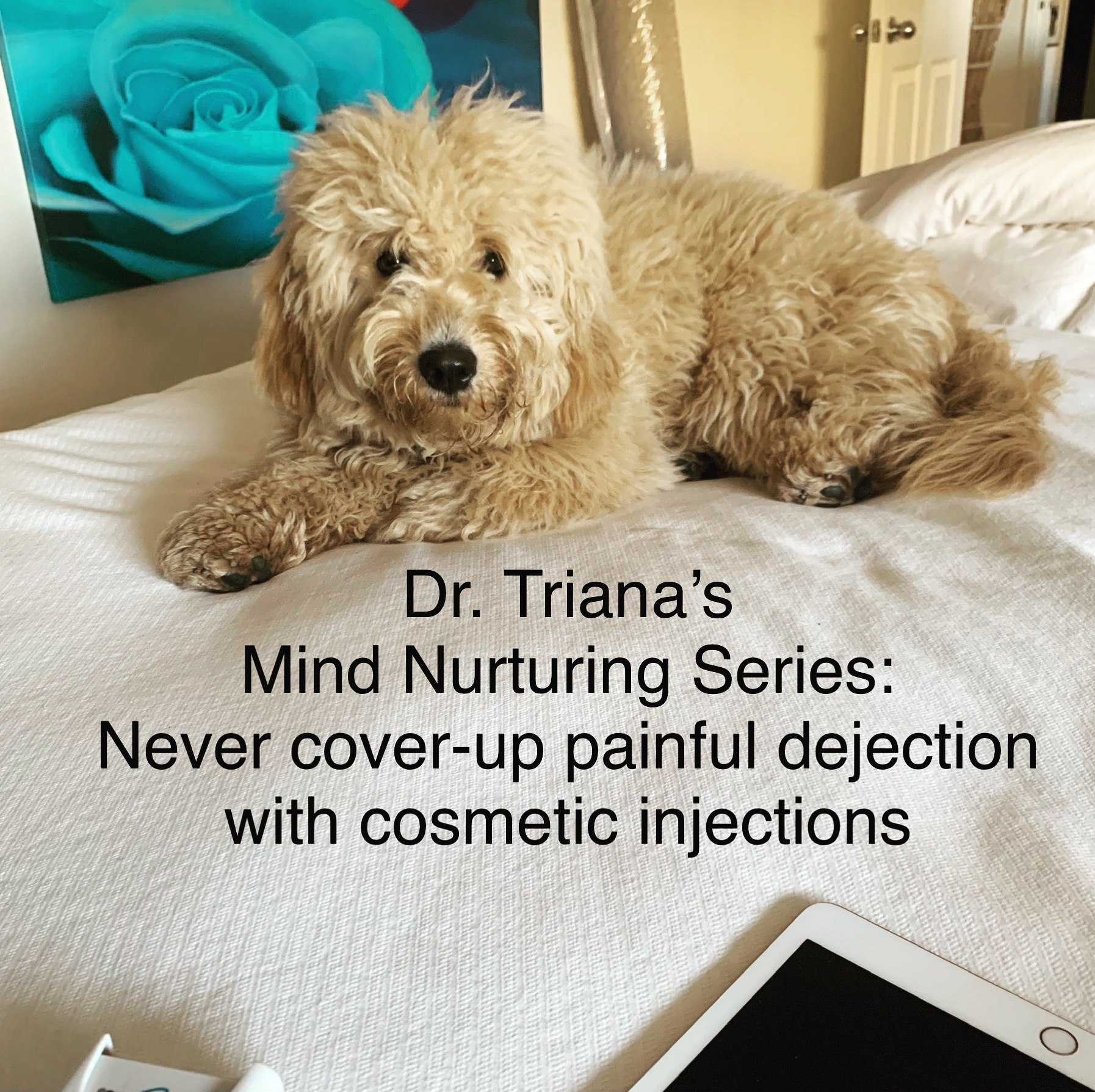 Dr Triana's Mind nurturing Series