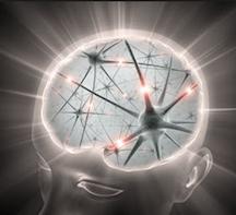 brainercize-tab