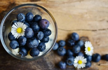 blueberries-2278921_1920