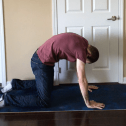 Low Back Care Routine Video
