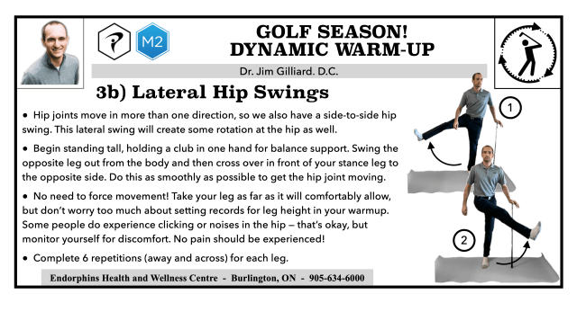Lateral Hip Swings