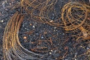 Photograph of burnt grass on dirt