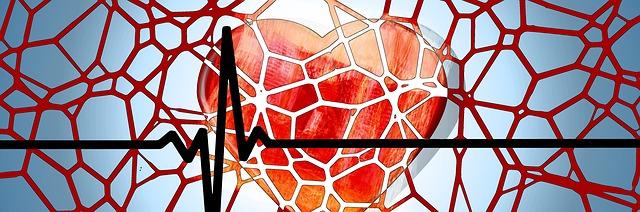 heart-1222517_640 Saúde do Homem: Doenças que Mais Afetam os Homens