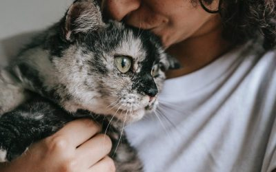 Essential Oils for you and your pets (Part 2)