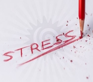 Stress | Triggering Situations