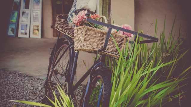 basket bicycle bike cart