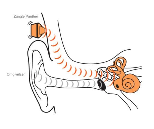 Zungle panther solbriller test anmeldelse konduktion knogle-ledning musik øretelefoner