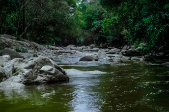 river flowing gently