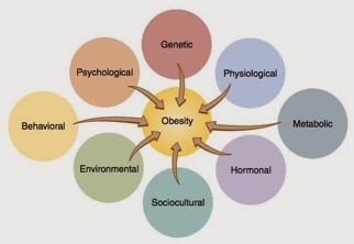 environmental factors role in obesity epidemic essay Chronic hunger and obesity epidemic eroding global progress, world watch   given rise to bse, foot and mouth disease, or the cost to the environment, etc.
