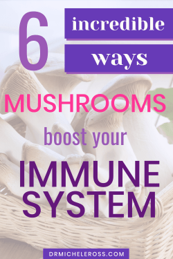 oyster mushrooms improve your immune system