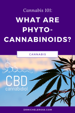 cbd and thc are phytocannabinoids found in cannabis