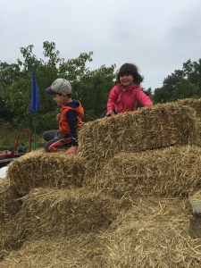 ...and climbing on hay bales
