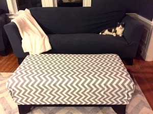 The after ottoman, couch cover and carpet, with matching cat