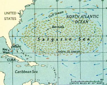 Mar de Sargazo