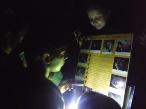 Varios niños participan en una actividad nocturna en un bosque.