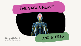 the vagus nerve and stress response