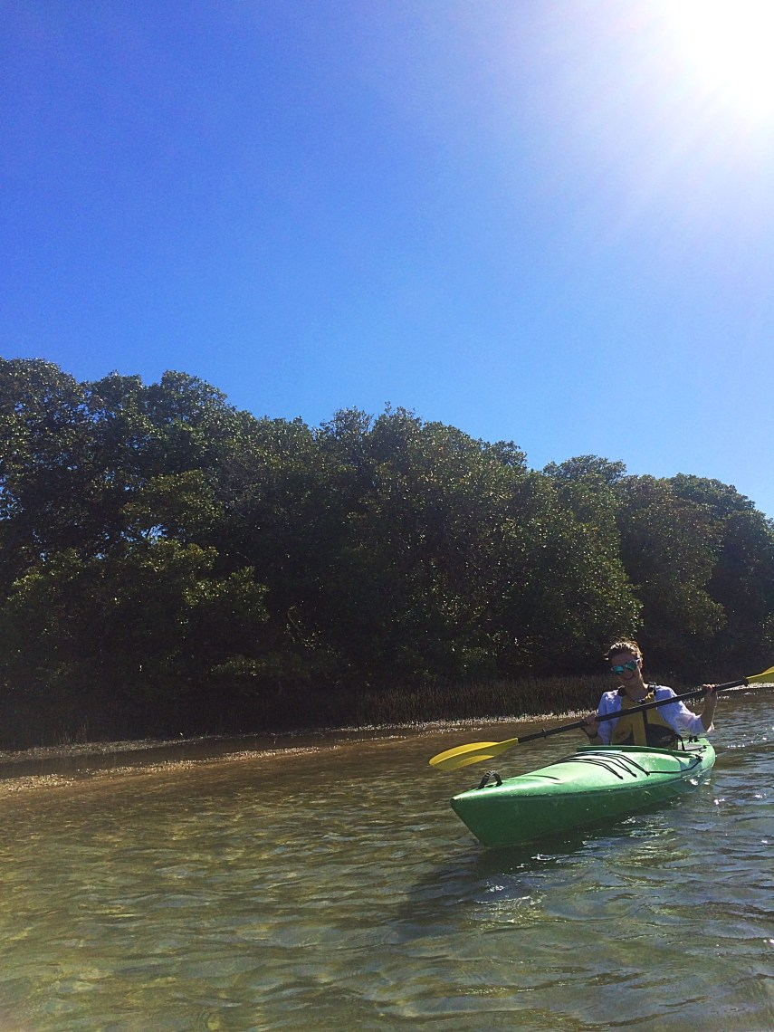 Kayaking with Bottlenose dolphins.
