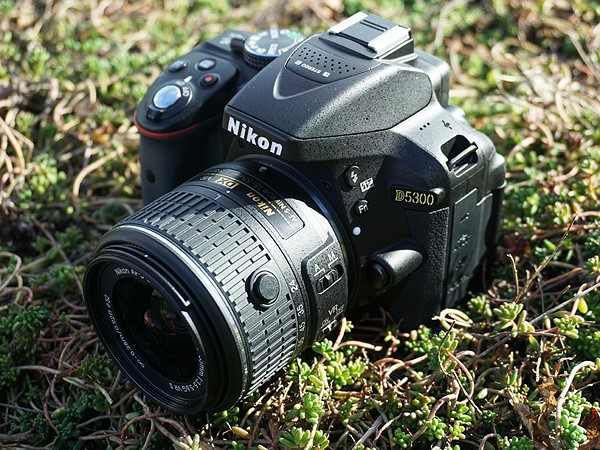 best dslr to buy nikon d5300