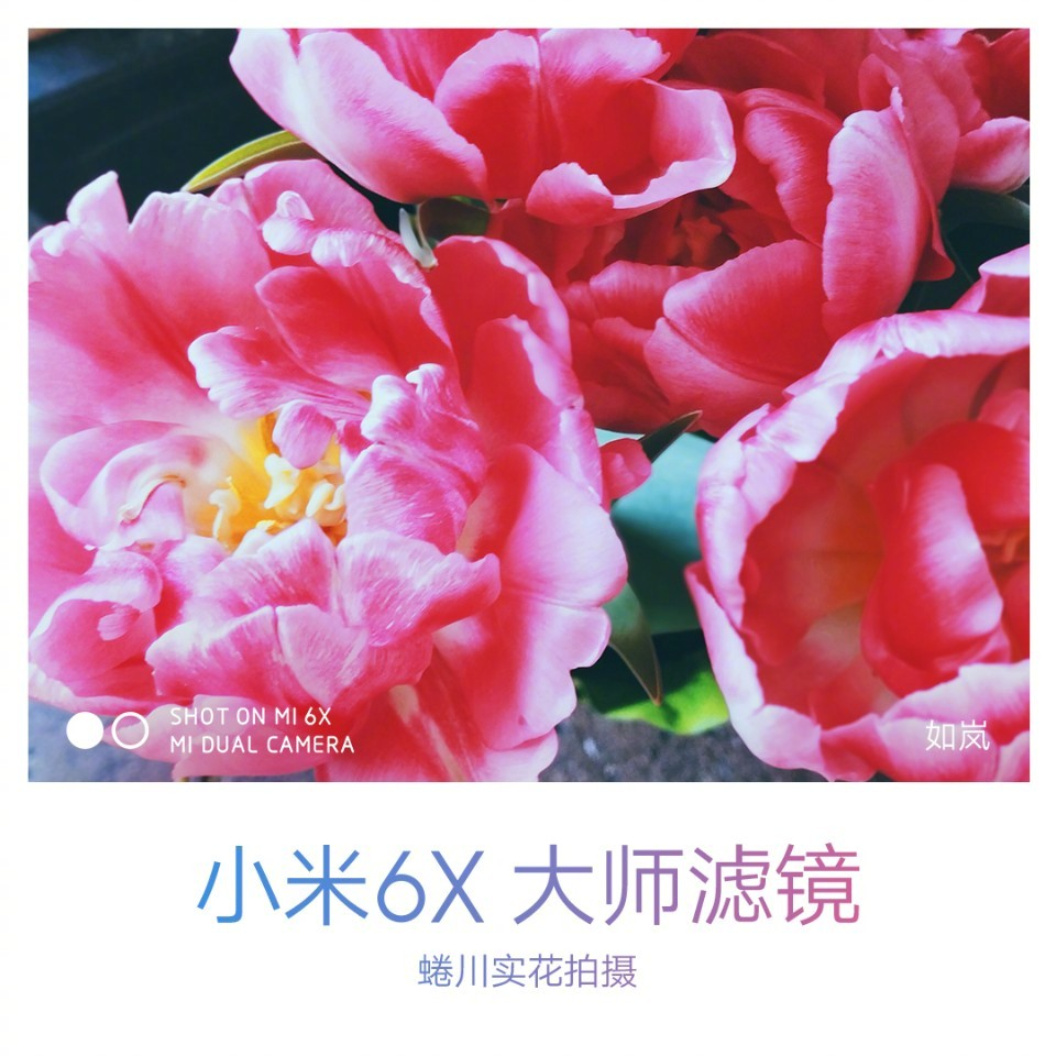 Check out these latest Xiaomi Mi 6X Camera Samples 7