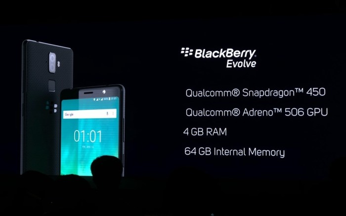 Blackberry Evolve Specifications