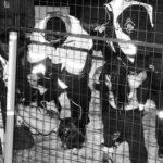 Arrestation des deux activistes des Femen lors du couronnement de la reine .