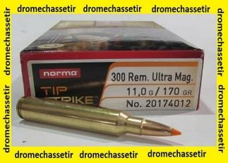 boite 20 Cartouches calibre 300 RUM