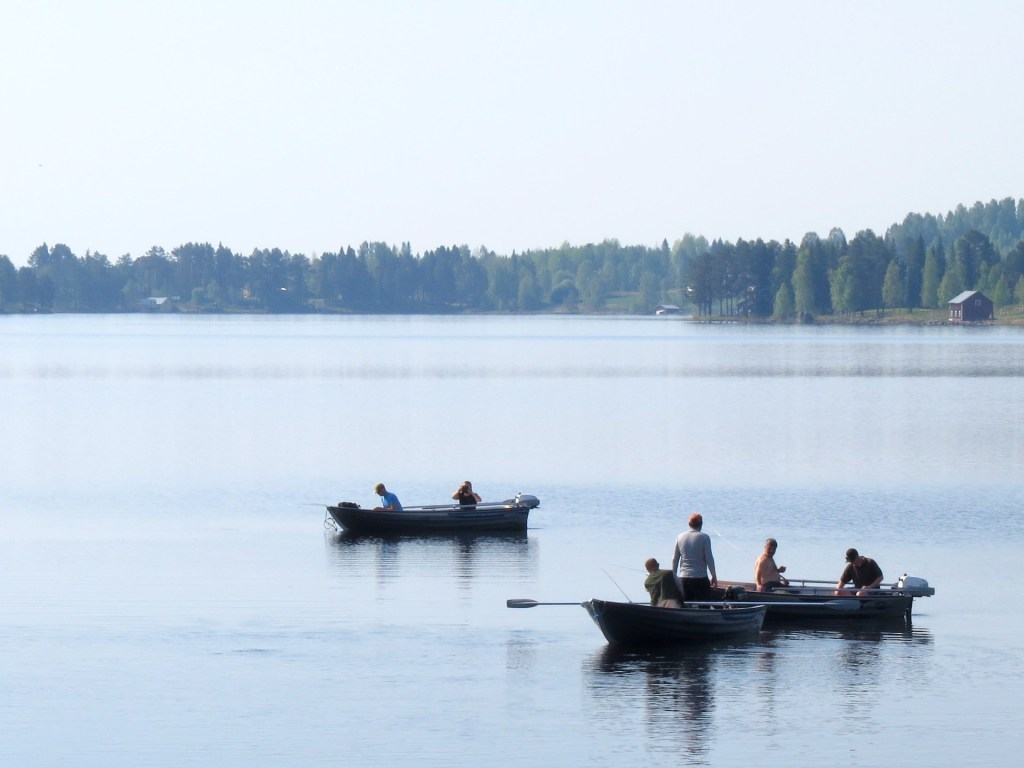 Fiskegäster hos Klockars Hällesjö