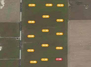 How Crop IMS Empowers Decision Making with DroneDeploy