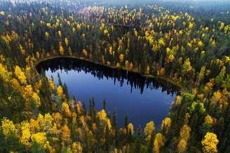 Karl Adami - Lake