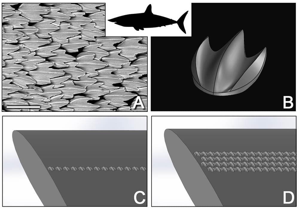 Figure 120 - Sharkskin