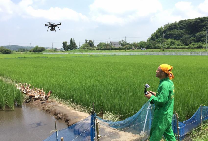 Drone Japan