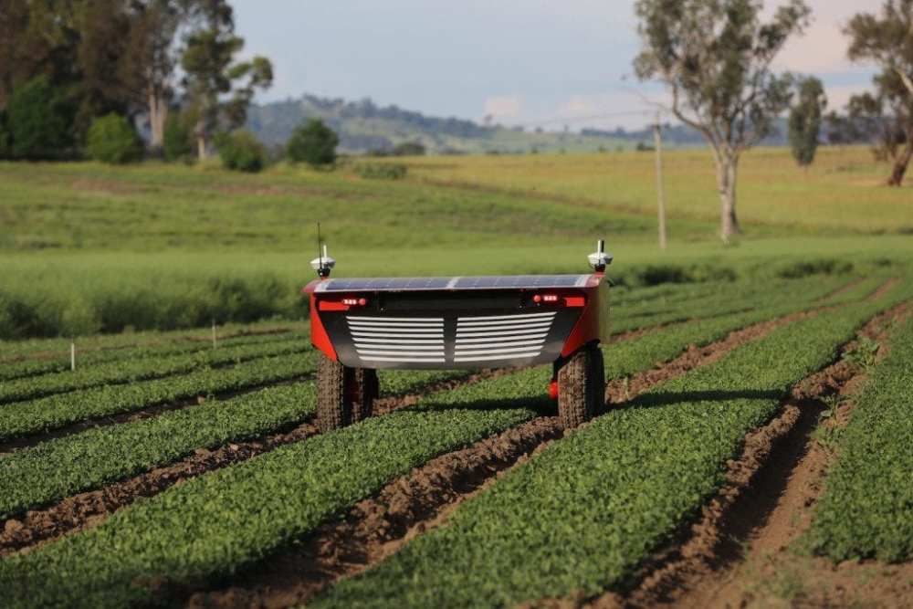 autonomous vegetable harvesting robot, Ladybird