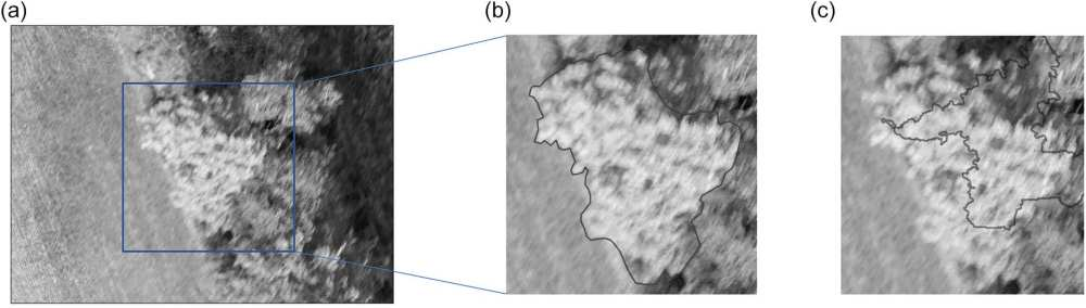 Gray-scale graphical example of a mature sugar maple tree crown for training and validation of pixel-based and object-based classification accuracy: (a) UAV normal colour multispectral imagery, (b) trained airphoto- interpreter manual crown delineation, and (c) automated crown object delineation using OBIA region-growing technique. Area shown in Fig. 2a is approximately 0.25 ha.