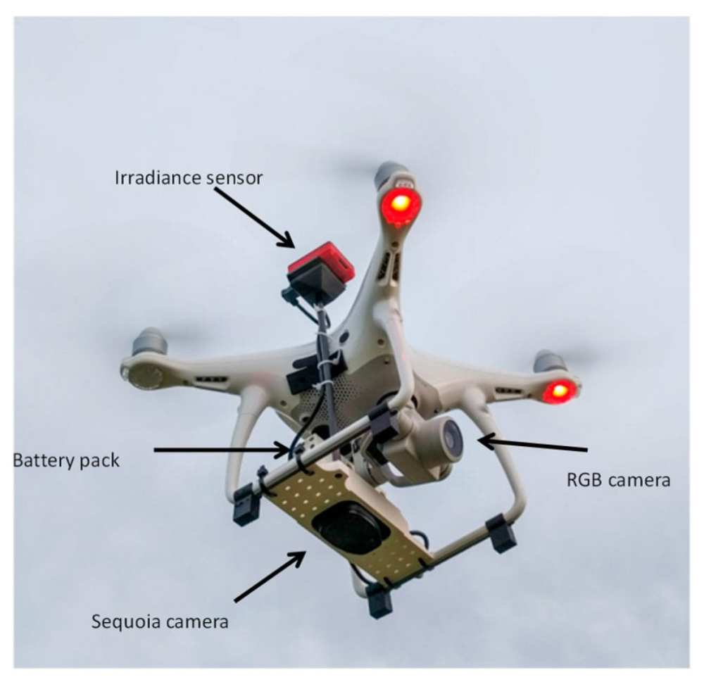 Unmanned Aerial Vehicle used for the study consisting of a DJI Phantom 4+ quadcopter equipped with its 4K RGB camera and a specific mount for the Parrot Sequoia multispectral camera, including both the camera itself and the sunshine sensor (original design from Zcopters).
