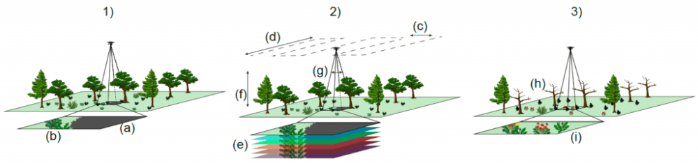 "Identification and monitoring of understorey vegetation: challenges and suggestions to overcome them. (1) illustrates key challenges involved with identification and monitoring of understorey vegetation, which can be subdivided on (a) overstorey and its shadow blocking view of understorey species and (b) intrinsic challenges of understorey identification as related to scale (smaller species) and spatial and spectral overlap of understorey species. (2) Shows how flight parameters and technical specifications can be manipulated to help overcome the challenges of understorey monitoring. To overcome obscuration from the overstorey, users can (c) reduce the line spacing to increase side overlap, and (d) reduce speed to increase the forward overlap. To help overcome the spectral overlap of understorey species, (e) sensor spectral range can be increased, such as with the use of multispectral and hyperspectral sensors. To assist with the detection of small understorey plants, operators can (f) fly lower and (g) change the camera specifications by increasing sensor resolution and increasing the focal length of the lens used. (3) Shows how UAS flights can be timed to overcome overstorey obscuration and spectral overlap in the understorey. Overstorey obscuration can be overcome by (g) targeting ""leaf off"" periods if working in deciduous environments. Spectral overlap can be overcome by targeting understorey phenological events such as (h) senescence and (i) flowering."