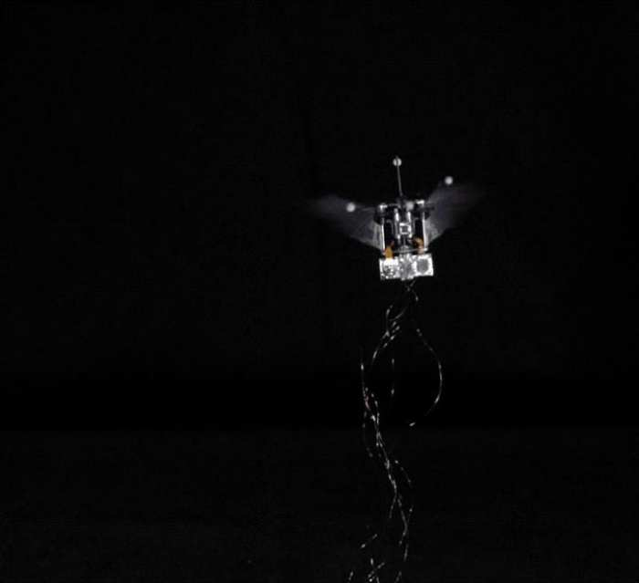 This robotic hummingbird flies on its own while tethered to an energy source, but will soon be powered on batteries. Credit. Purdue University video/Bio-Robotics Lab