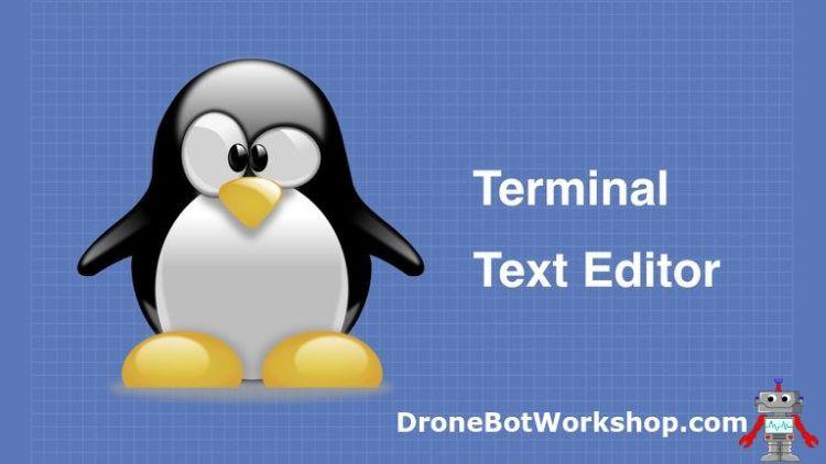Terminal & Text Editor