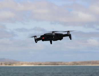 DJI Mavic Air used for whale research in Cabo Verde 0002