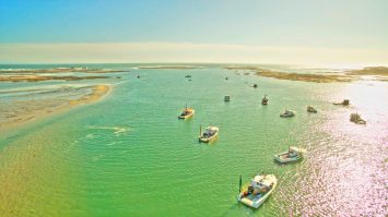 aerial shot of boats during low tide