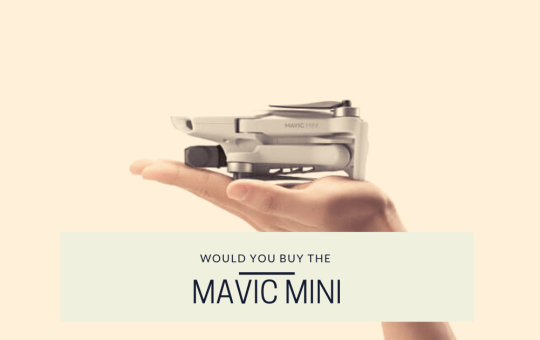 Would You Buy The Mavic Mini?