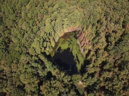 Pond, Mulberry - Eric Waterbury