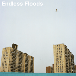 endless-floods-ii-artwork