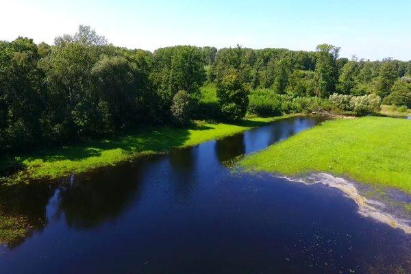 Inspekcja rzeki Mogilno Opalenica