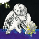 Songs Ohia - The Magnolia Electric Co.
