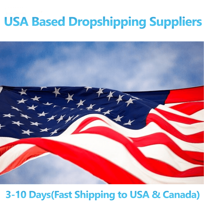 US DROPSHIPPING