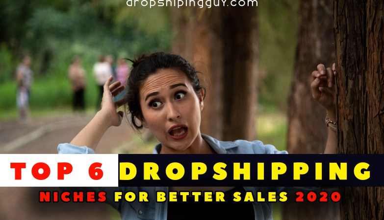 profitable dropshipping niches