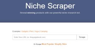 Niche Scraper