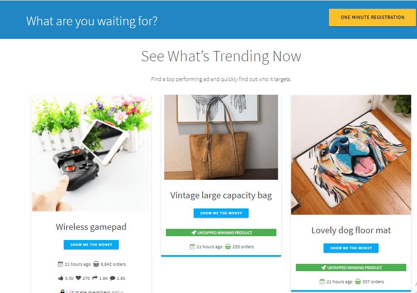 Shopify dropshipping niche ideas