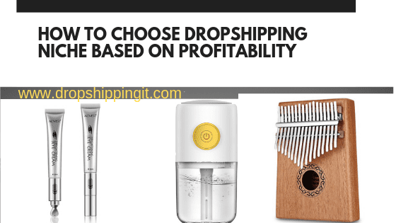 How To Choose Dropshipping Niche Based On Profitability